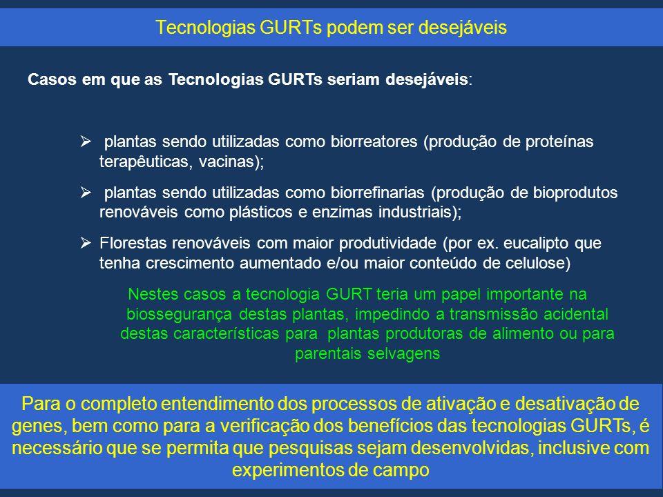 Tecnologias GURTs podem ser desejáveis Casos em que as Tecnologias GURTs seriam desejáveis: plantas sendo utilizadas como biorreatores (produção de proteínas terapêuticas, vacinas); plantas sendo utilizadas como biorrefinarias (produção de bioprodutos renováveis como plásticos e enzimas industriais); Florestas renováveis com maior produtividade (por ex.