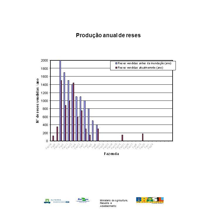 Produção anual de reses Ministério da Agricultura, Pecuária e Abastecimento