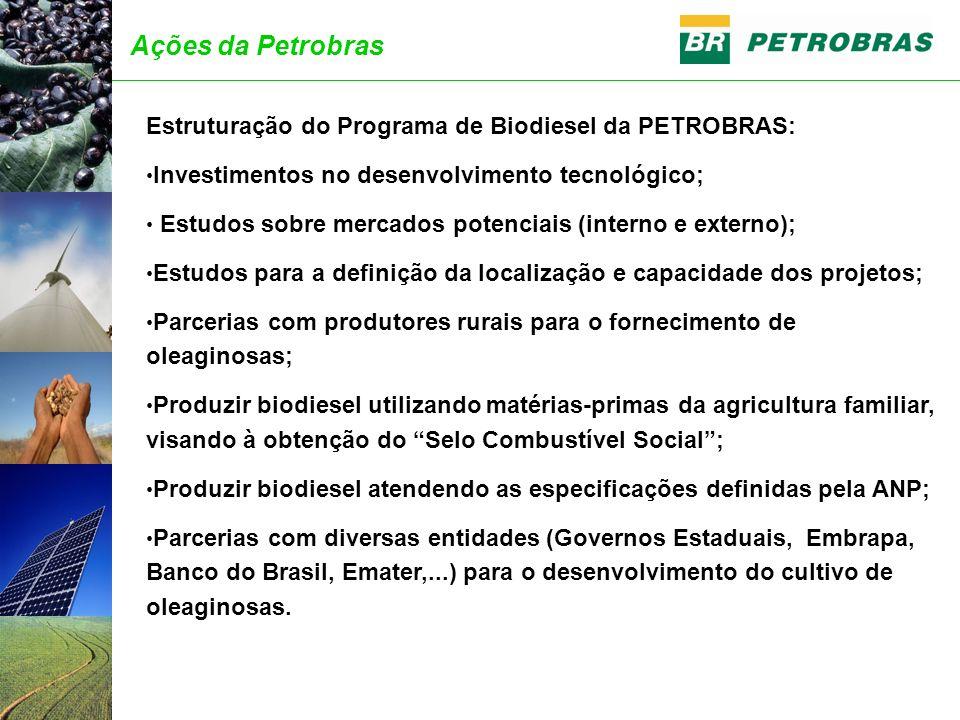 Estruturação do Programa de Biodiesel da PETROBRAS: Investimentos no desenvolvimento tecnológico; Estudos sobre mercados potenciais (interno e externo