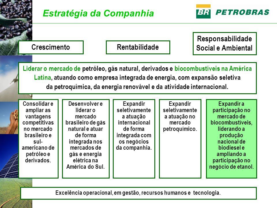 Estratégia da Companhia Rentabilidade Responsabilidade Social e Ambiental Consolidar e ampliar as vantagens competitivas no mercado brasileiro e sul-