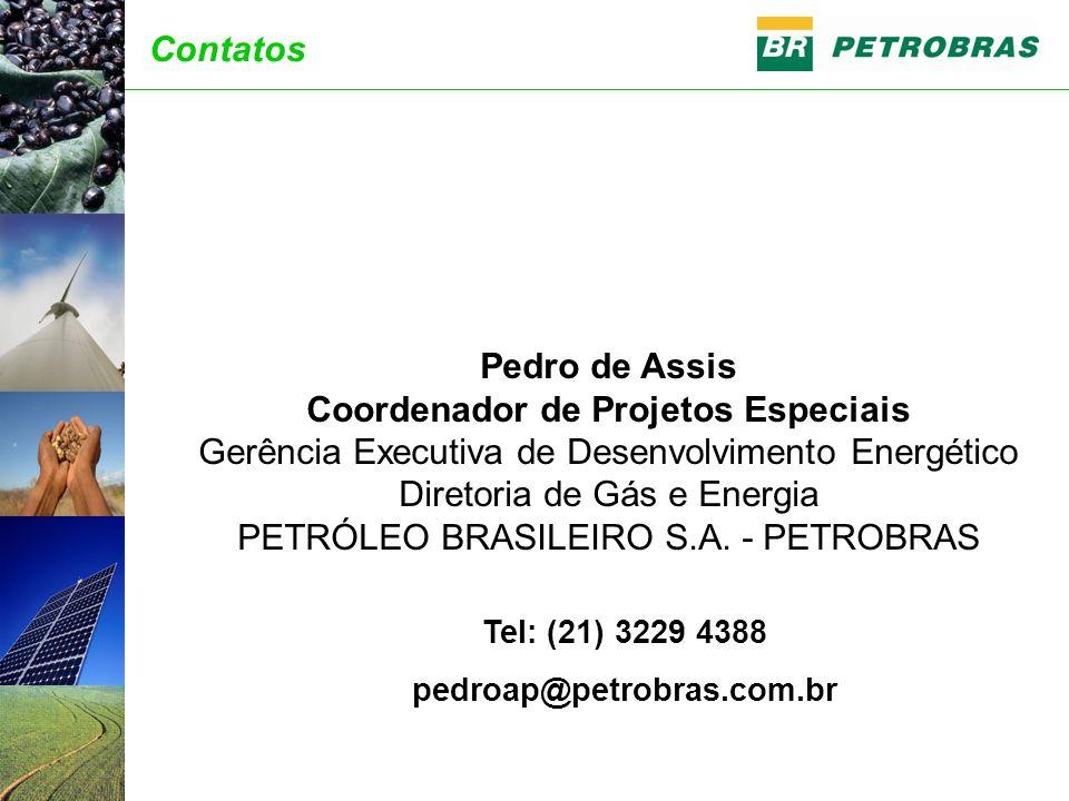 Tel: (21) 3229 4388 pedroap@petrobras.com.br Pedro de Assis Coordenador de Projetos Especiais Gerência Executiva de Desenvolvimento Energético Diretor