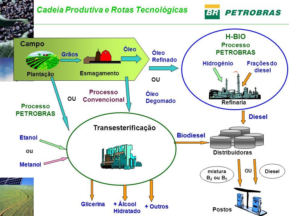 Biodiesel Glicerina Refinaria HidrogênioFrações do diesel Postos Distribuidoras Campo Plantação Esmagamento Grãos Óleo Diesel H-BIO Processo PETROBRAS