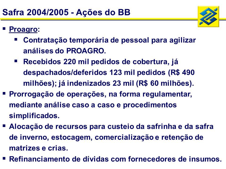 Planos de Safra - Brasil - R$ milhões Plano de Safra 2005/2006 R$ 53,4 bi R$ 27,1 bi
