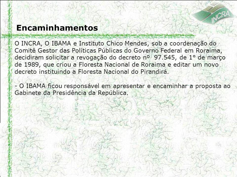 Encaminhamentos O INCRA, O IBAMA e Instituto Chico Mendes, sob a coordenação do Comitê Gestor das Políticas Públicas do Governo Federal em Roraima, de