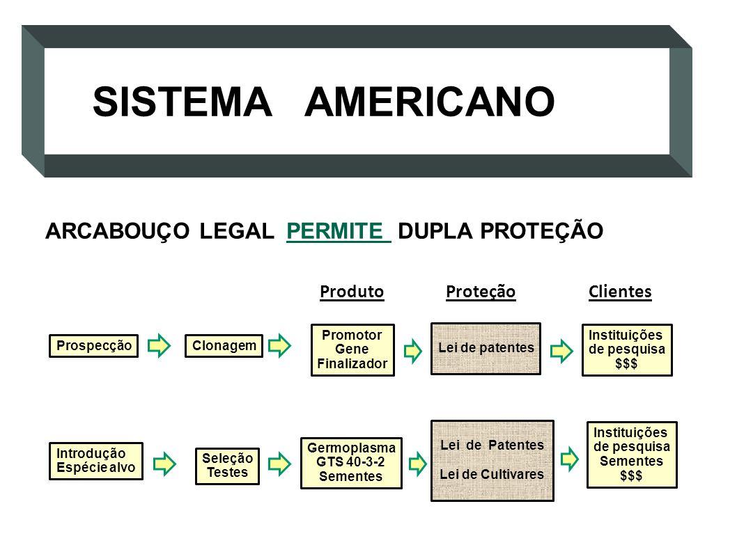 Prospecção Promotor Gene Finalizador Introdução Espécie alvo Clonagem ProdutoProteção Lei de patentes Clientes Instituições de pesquisa $$$ Germoplasm