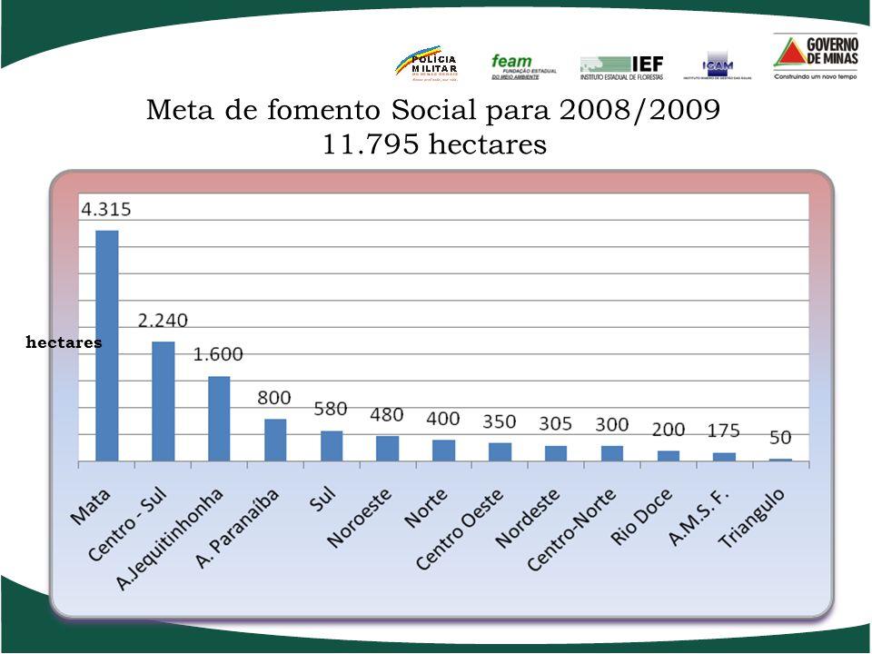 Meta de fomento de Reposição Florestal para 2008/2009 24.000 hectares hectares