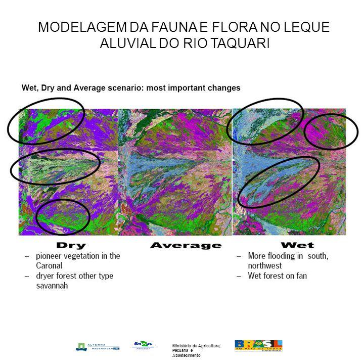 MODELAGEM DA FAUNA E FLORA NO LEQUE ALUVIAL DO RIO TAQUARI Ministério da Agricultura, Pecuária e Abastecimento