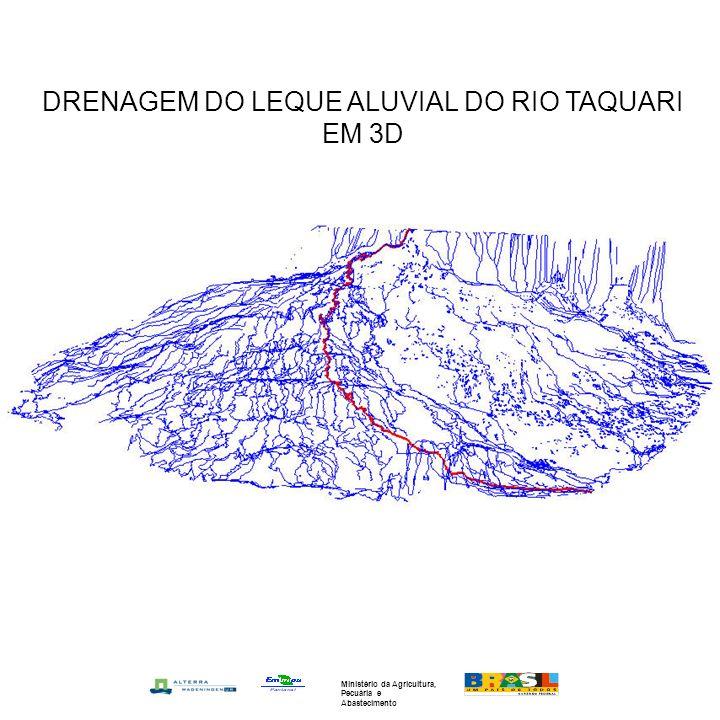 DRENAGEM DO LEQUE ALUVIAL DO RIO TAQUARI EM 3D Ministério da Agricultura, Pecuária e Abastecimento