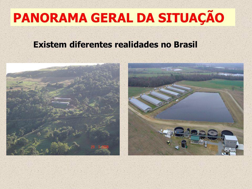 PANORAMA GERAL DA SITUAÇÃO Existem diferentes realidades no Brasil