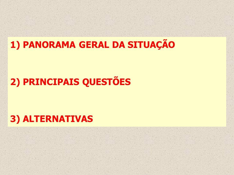 1) PANORAMA GERAL DA SITUAÇÃO 2) PRINCIPAIS QUESTÕES 3) ALTERNATIVAS