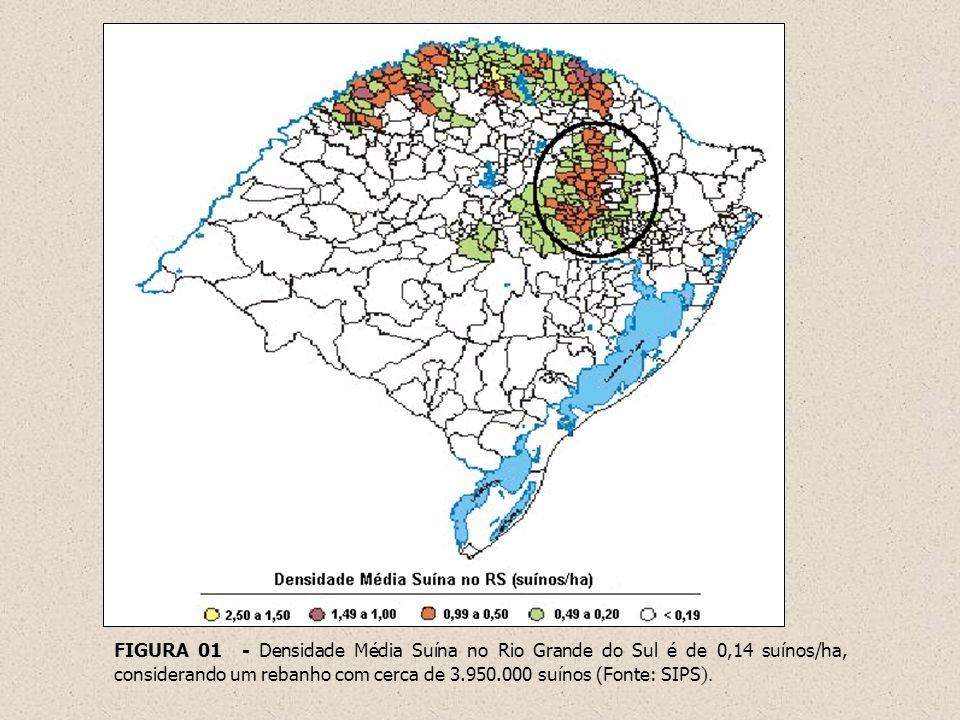 FIGURA 01 - Densidade Média Suína no Rio Grande do Sul é de 0,14 suínos/ha, considerando um rebanho com cerca de 3.950.000 suínos (Fonte: SIPS ).