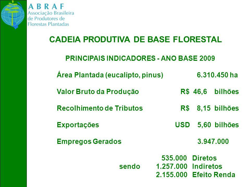 CADEIA PRODUTIVA DE BASE FLORESTAL PRINCIPAIS INDICADORES - ANO BASE 2009 Área Plantada (eucalipto, pinus) 6.310.450 ha Valor Bruto da Produção R$ 46,