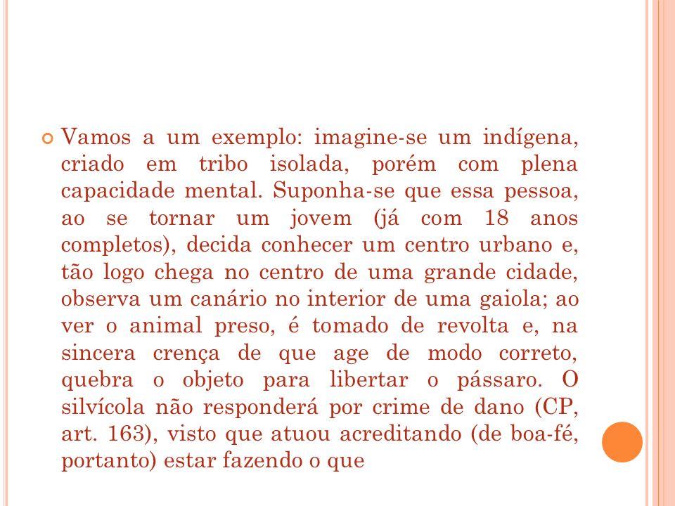 Vamos a um exemplo: imagine-se um indígena, criado em tribo isolada, porém com plena capacidade mental. Suponha-se que essa pessoa, ao se tornar um jo