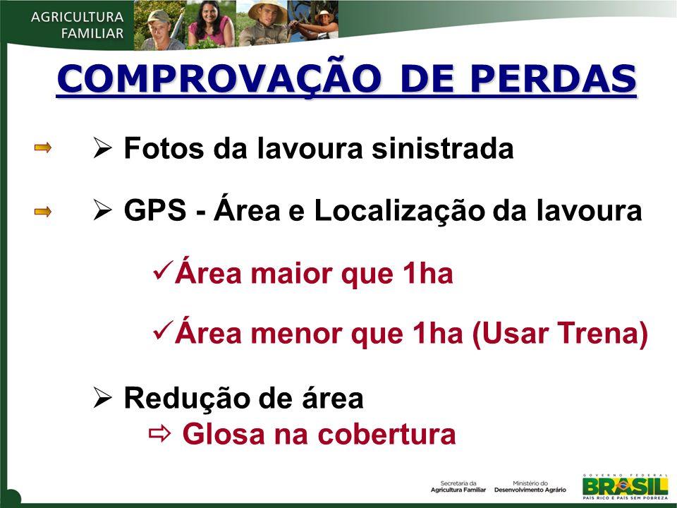 Fotos da lavoura sinistrada GPS - Área e Localização da lavoura Área maior que 1ha Área menor que 1ha (Usar Trena) Redução de área Glosa na cobertura