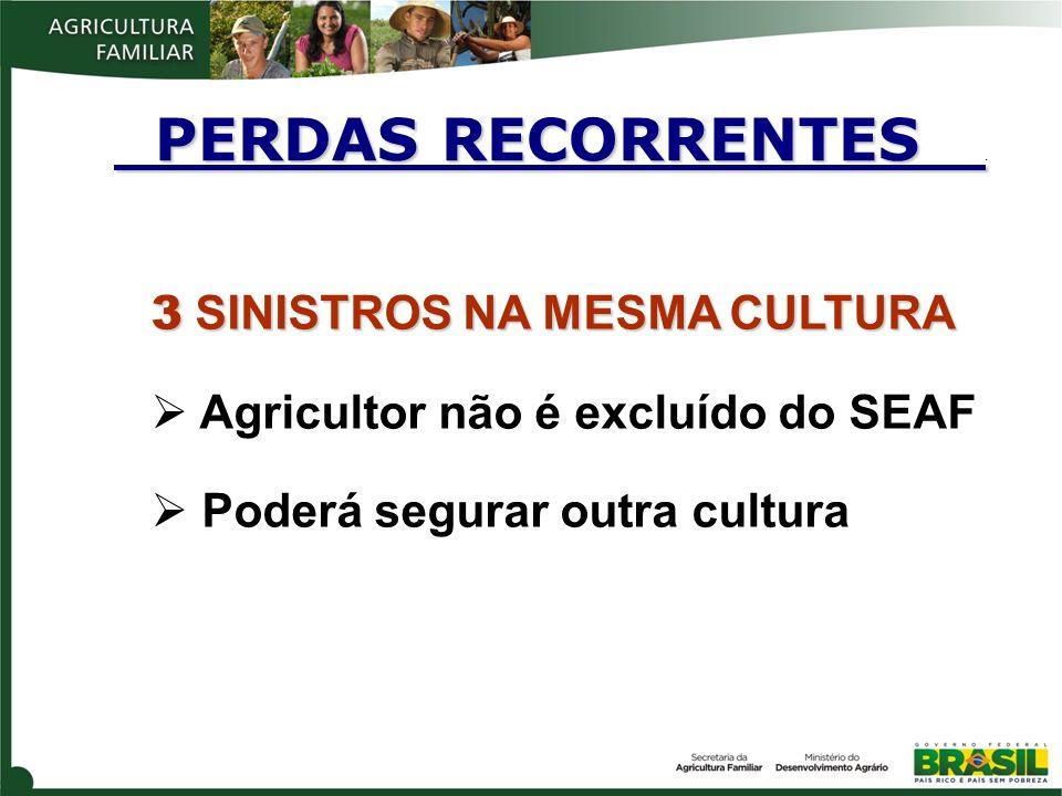 3 SINISTROS NA MESMA CULTURA Agricultor não é excluído do SEAF Poderá segurar outra cultura PERDAS RECORRENTES. PERDAS RECORRENTES.