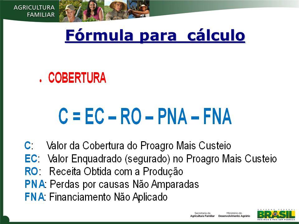 Fórmula para cálculo