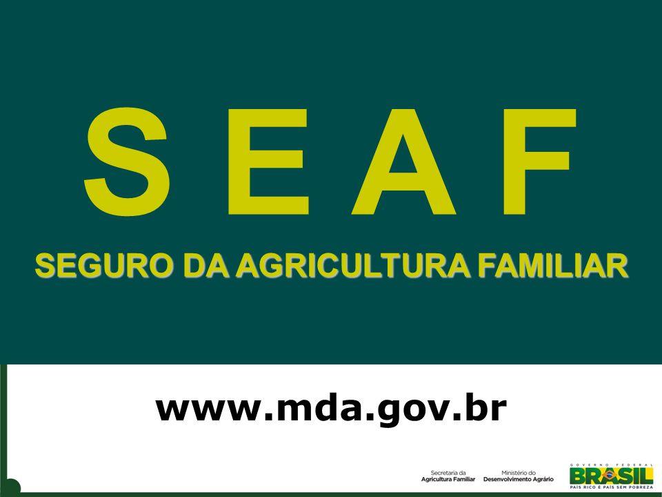 S E A F SEGURO DA AGRICULTURA FAMILIAR www.mda.gov.br
