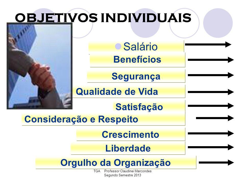 TGA Professor Claudinei Marcondes Segundo Semestre 2013 OBJETIVOS INDIVIDUAIS Salário Benefícios Segurança Qualidade de Vida Satisfação Consideração e