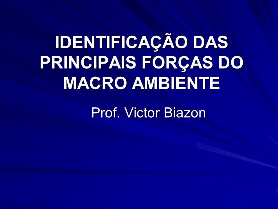 IDENTIFICAÇÃO DAS PRINCIPAIS FORÇAS DO MACRO AMBIENTE Prof. Victor Biazon