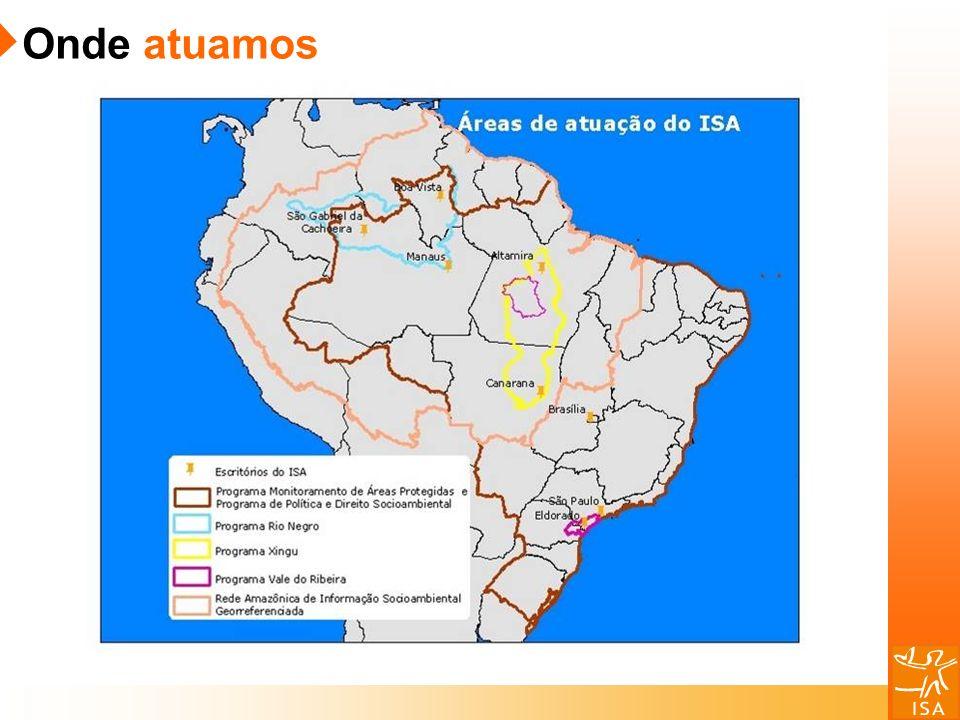 2000 – A campanha virtual SOS Florestas pela manutenção do Código Florestal consegue a adesão de dez mil pessoas.