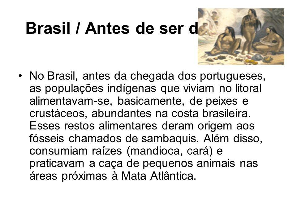 Brasil / Antes de ser descoberto No Brasil, antes da chegada dos portugueses, as populações indígenas que viviam no litoral alimentavam-se, basicament