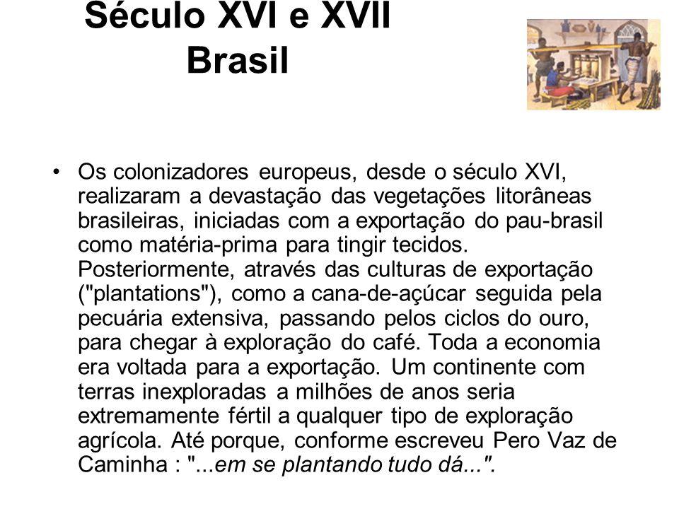 Século XVI e XVII Brasil Os colonizadores europeus, desde o século XVI, realizaram a devastação das vegetações litorâneas brasileiras, iniciadas com a