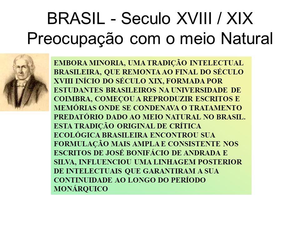 BRASIL - Seculo XVIII / XIX Preocupação com o meio Natural EMBORA MINORIA, UMA TRADIÇÃO INTELECTUAL BRASILEIRA, QUE REMONTA AO FINAL DO SÉCULO XVIII I