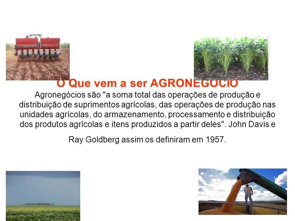 O Que vem a ser AGRONEGÓCIO Agronegócios são
