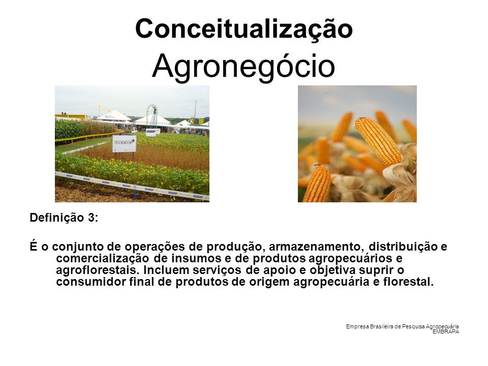 Conceitualização Agronegócio Definição 3: É o conjunto de operações de produção, armazenamento, distribuição e comercialização de insumos e de produto
