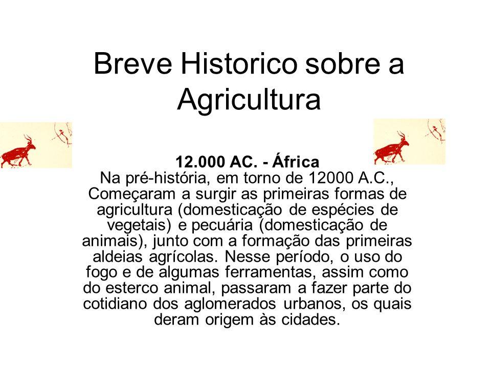Breve Historico sobre a Agricultura 12.000 AC. - África Na pré-história, em torno de 12000 A.C., Começaram a surgir as primeiras formas de agricultura