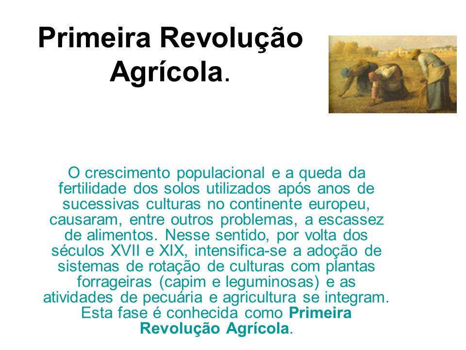 Primeira Revolução Agrícola. O crescimento populacional e a queda da fertilidade dos solos utilizados após anos de sucessivas culturas no continente e