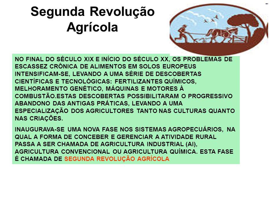 Segunda Revolução Agrícola NO FINAL DO SÉCULO XIX E INÍCIO DO SÉCULO XX, OS PROBLEMAS DE ESCASSEZ CRÔNICA DE ALIMENTOS EM SOLOS EUROPEUS INTENSIFICAM-