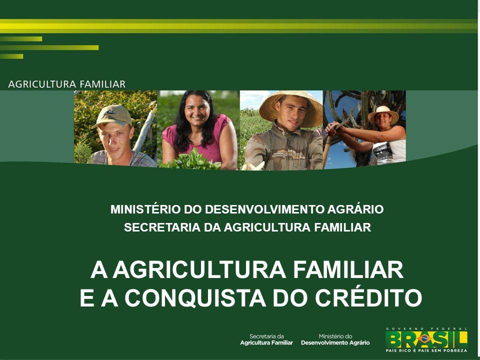 TÍTULO MINISTÉRIO DO DESENVOLVIMENTO AGRÁRIO SECRETARIA DA AGRICULTURA FAMILIAR A AGRICULTURA FAMILIAR E A CONQUISTA DO CRÉDITO