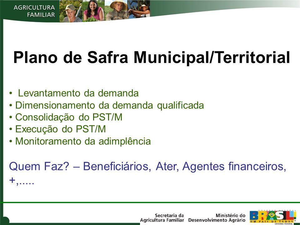 Plano de Safra Municipal/Territorial Levantamento da demanda Dimensionamento da demanda qualificada Consolidação do PST/M Execução do PST/M Monitorame
