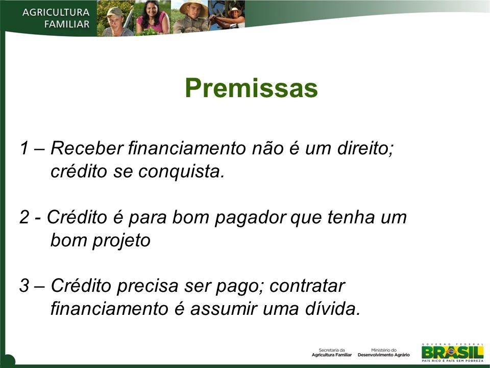 Premissas 1 – Receber financiamento não é um direito; crédito se conquista. 2 - Crédito é para bom pagador que tenha um bom projeto 3 – Crédito precis