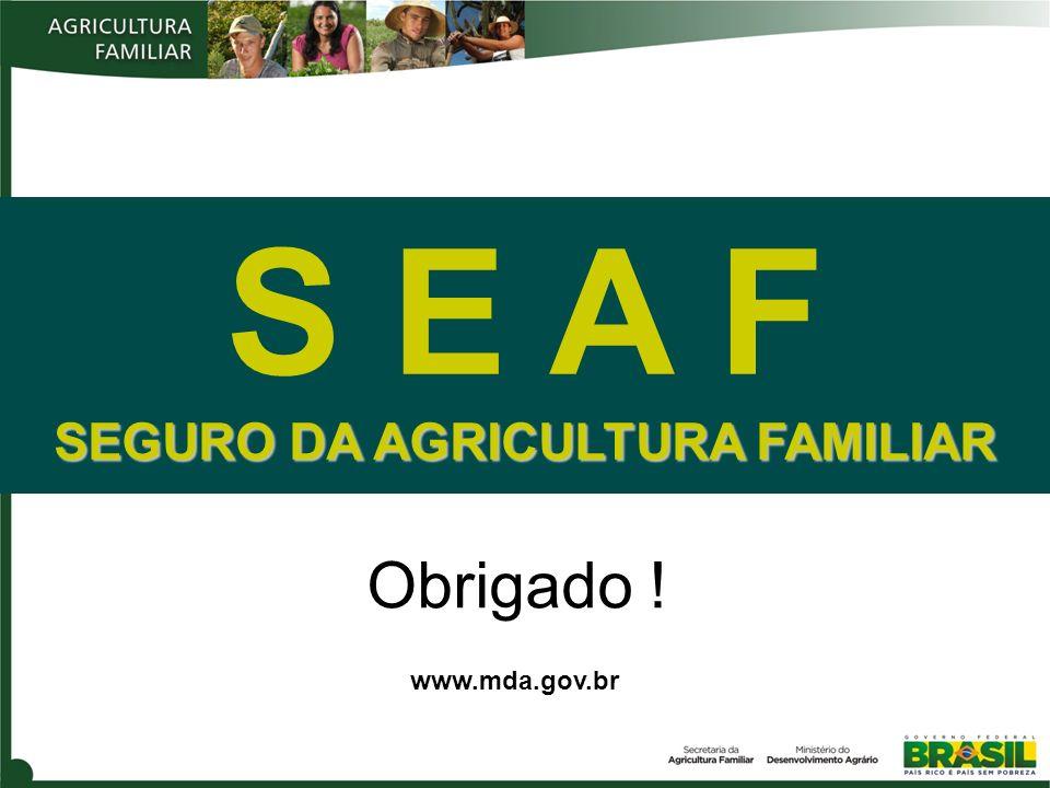 Obrigado ! www.mda.gov.br S E A F SEGURO DA AGRICULTURA FAMILIAR