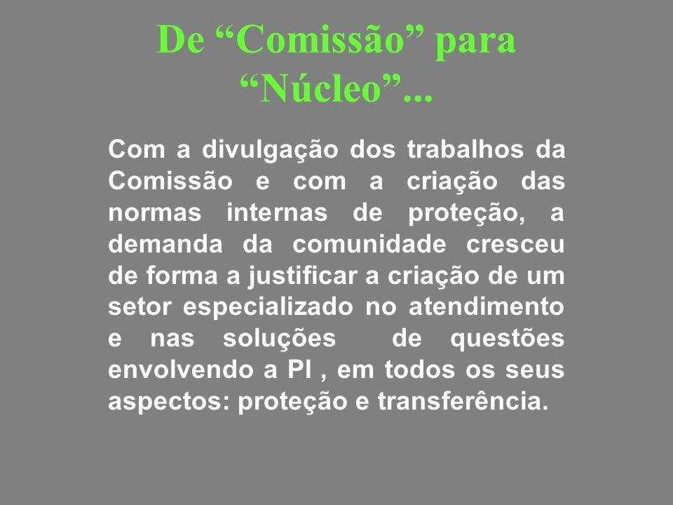 De Comissão para Núcleo... Com a divulgação dos trabalhos da Comissão e com a criação das normas internas de proteção, a demanda da comunidade cresceu