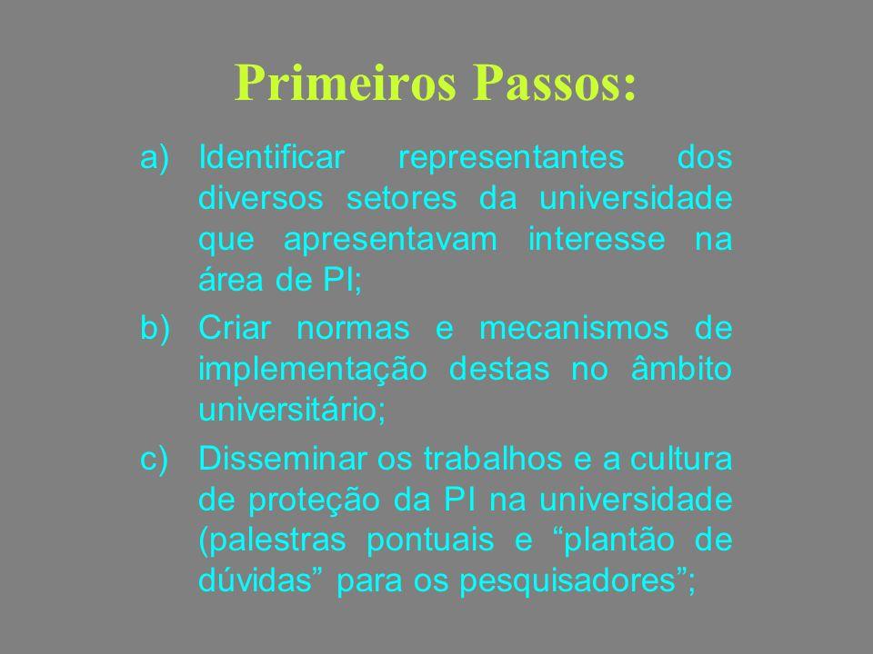 Primeiros Passos: a)Identificar representantes dos diversos setores da universidade que apresentavam interesse na área de PI; b)Criar normas e mecanis