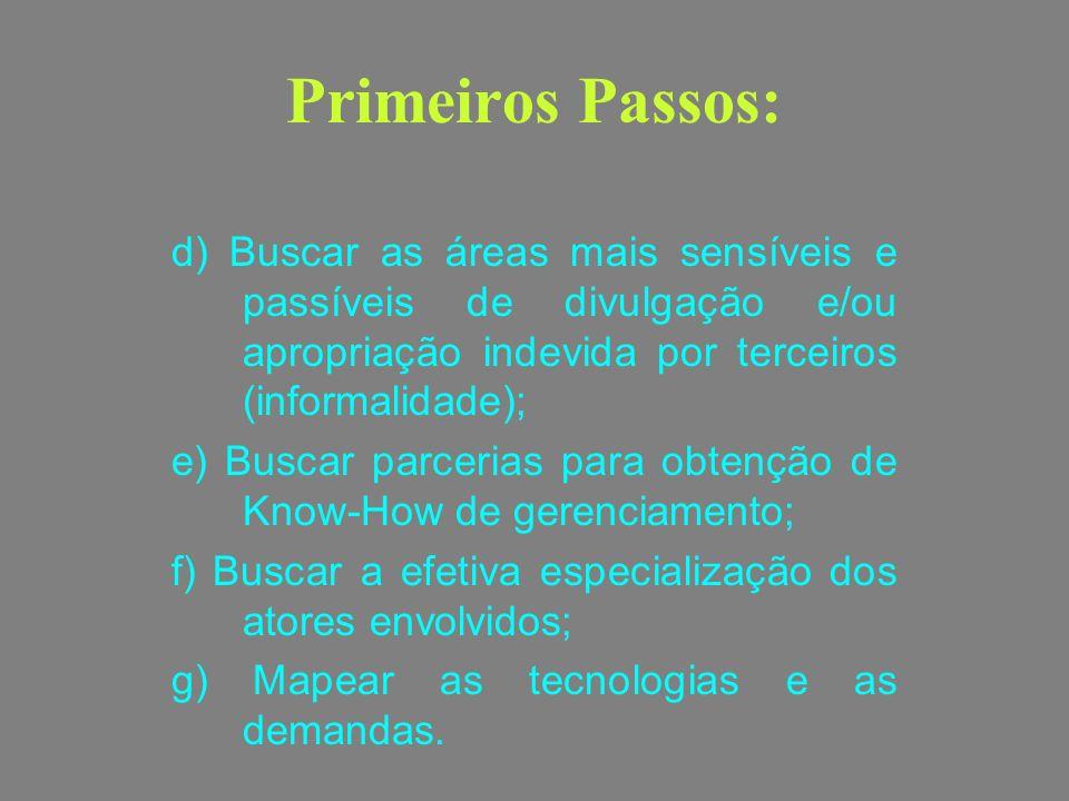 Primeiros Passos: d) Buscar as áreas mais sensíveis e passíveis de divulgação e/ou apropriação indevida por terceiros (informalidade); e) Buscar parce