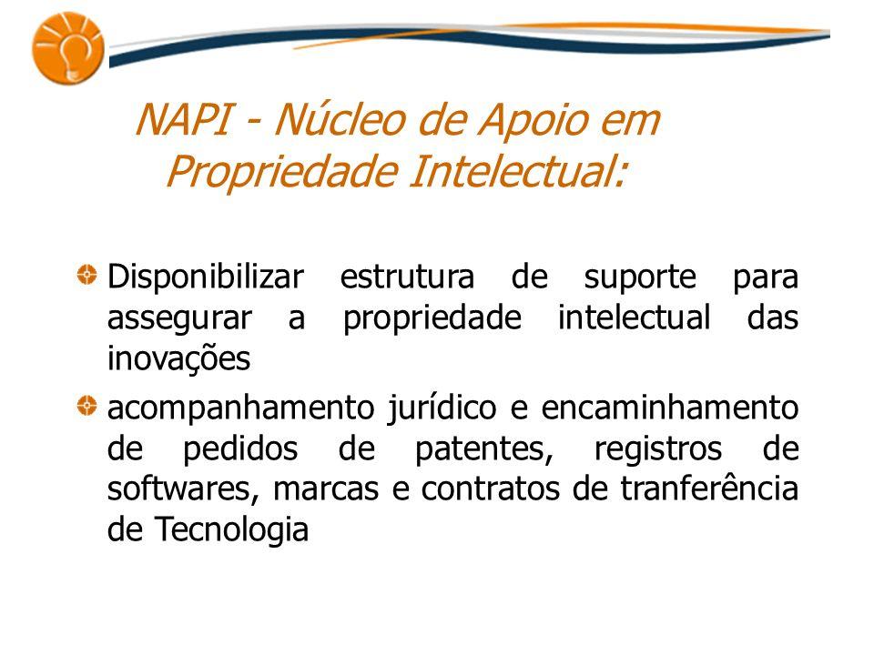 NAPI - Núcleo de Apoio em Propriedade Intelectual: Disponibilizar estrutura de suporte para assegurar a propriedade intelectual das inovações acompanh