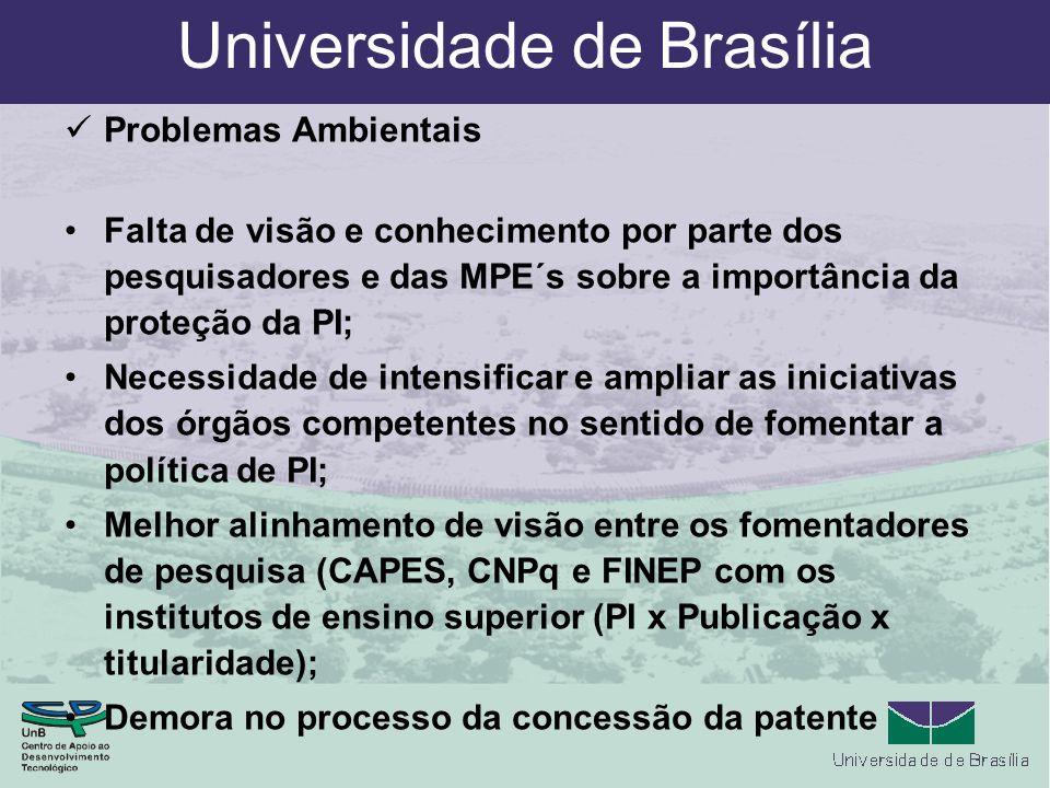 Universidade de Brasília Problemas Ambientais Falta de visão e conhecimento por parte dos pesquisadores e das MPE´s sobre a importância da proteção da