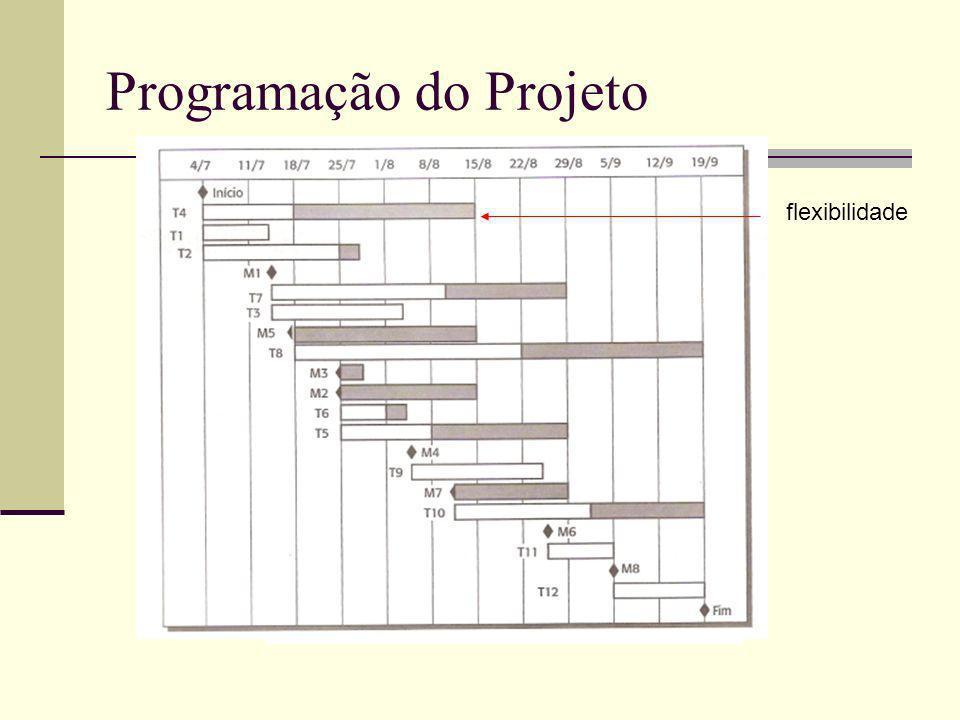 Programação do Projeto flexibilidade