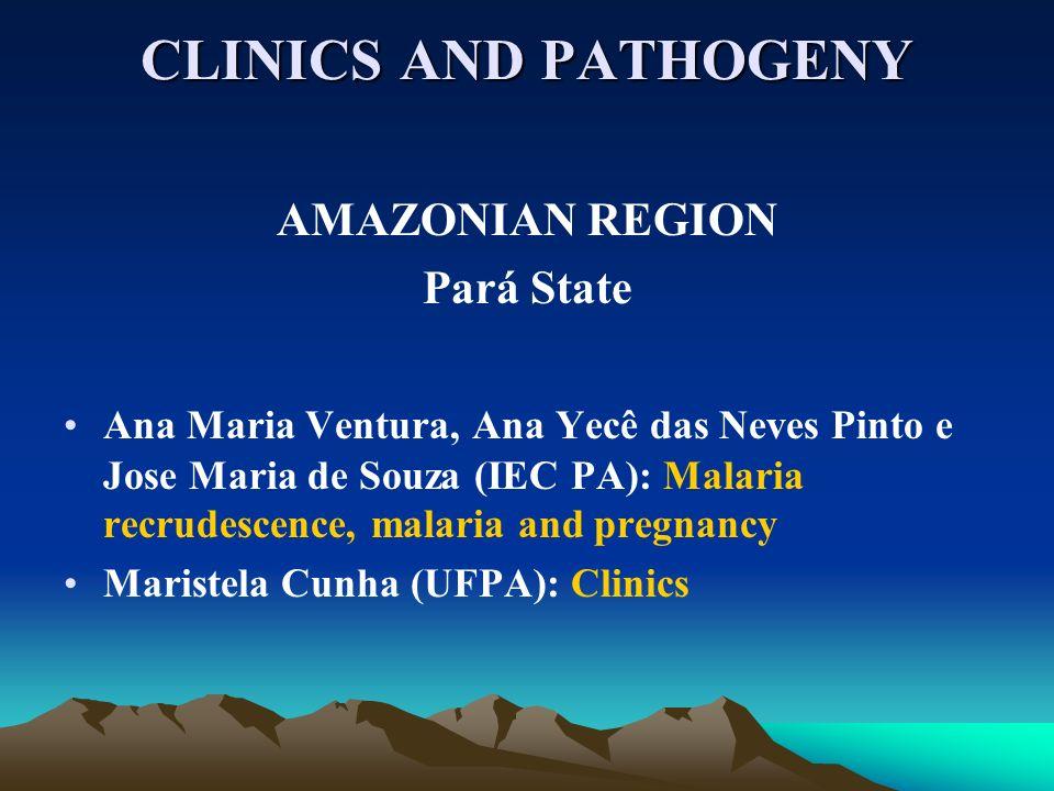 CLINICS AND PATHOGENY AMAZONIAN REGION Pará State Ana Maria Ventura, Ana Yecê das Neves Pinto e Jose Maria de Souza (IEC PA): Malaria recrudescence, malaria and pregnancy Maristela Cunha (UFPA): Clinics