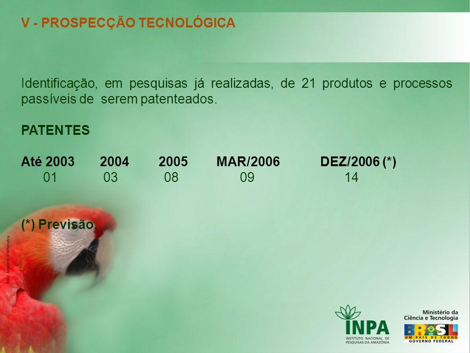V - PROSPECÇÃO TECNOLÓGICA Identificação, em pesquisas já realizadas, de 21 produtos e processos passíveis de serem patenteados. PATENTES Até 2003 200