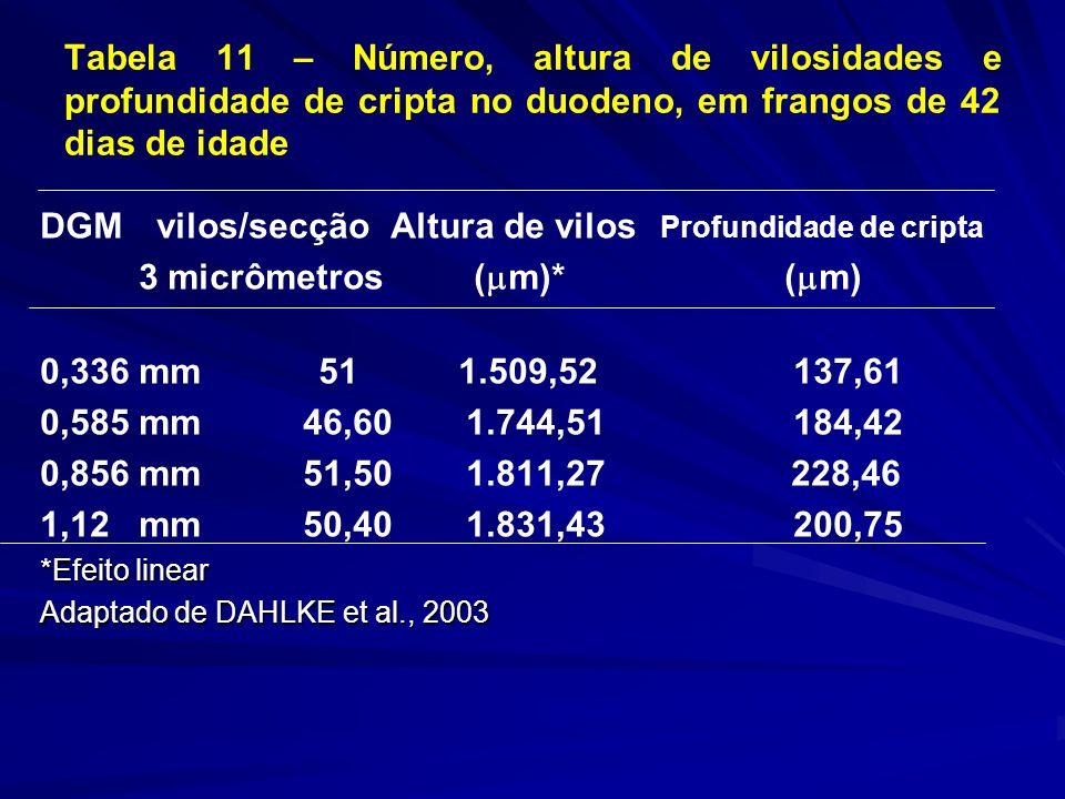 Tabela 11 – Número, altura de vilosidades e profundidade de cripta no duodeno, em frangos de 42 dias de idade DGM vilos/secção Altura de vilos Profundidade de cripta 3 micrômetros ( m)* ( m) 0,336 mm 51 1.509,52 137,61 0,585 mm 46,601.744,51 184,42 0,856 mm 51,501.811,27 228,46 1,12 mm 50,401.831,43 200,75 *Efeito linear Adaptado de DAHLKE et al., 2003