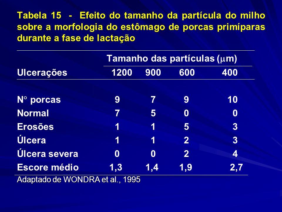Tabela 15 - Efeito do tamanho da partícula do milho sobre a morfologia do estômago de porcas primíparas durante a fase de lactação Tamanho das partículas ( m) Ulcerações 1200 900 600 400 N porcas 9 7 9 10 Normal 7 5 0 0 Erosões 1 1 5 3 Úlcera 1 1 2 3 Úlcera severa 0 0 2 4 Escore médio 1,3 1,4 1,9 2,7 Adaptado de WONDRA et al., 1995