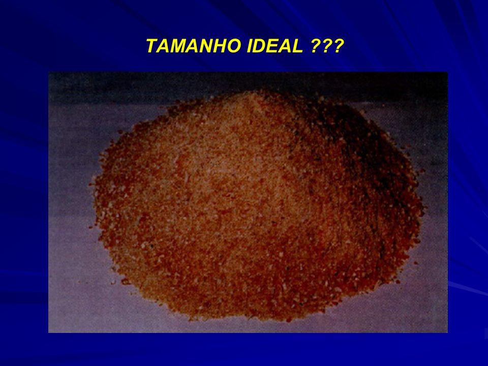 TAMANHO IDEAL ???