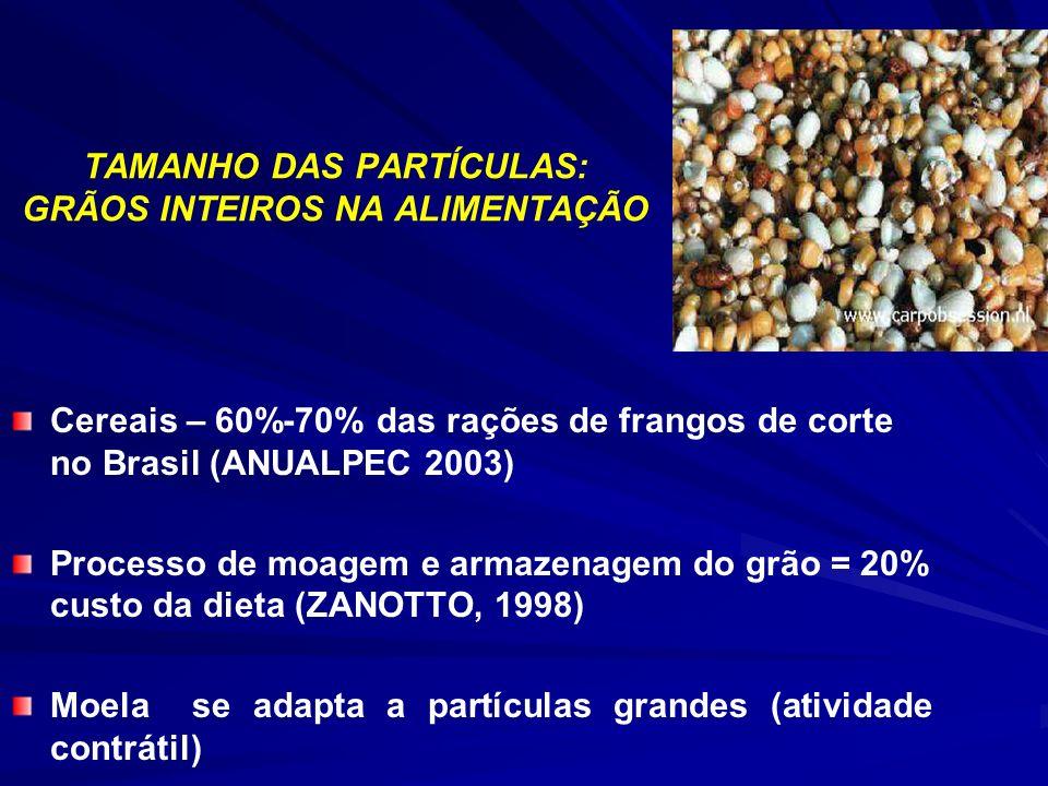 Cereais – 60%-70% das rações de frangos de corte no Brasil (ANUALPEC 2003) Processo de moagem e armazenagem do grão = 20% custo da dieta (ZANOTTO, 1998) Moela se adapta a partículas grandes (atividade contrátil)