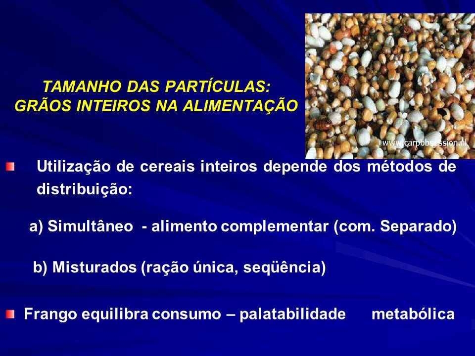 TAMANHO DAS PARTÍCULAS: GRÃOS INTEIROS NA ALIMENTAÇÃO Utilização de cereais inteiros depende dos métodos de distribuição: a) Simultâneo - alimento com
