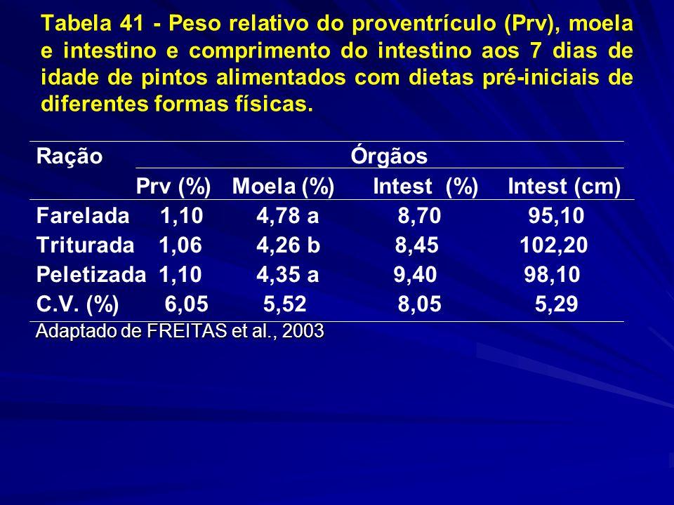 Tabela 41 - Peso relativo do proventrículo (Prv), moela e intestino e comprimento do intestino aos 7 dias de idade de pintos alimentados com dietas pré-iniciais de diferentes formas físicas.